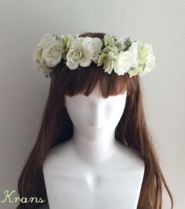 白花冠正面