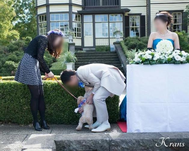 結婚式のリングドックウェディングドック
