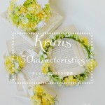 Krans花冠の5つの特徴