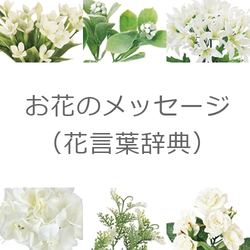 花言葉の辞典