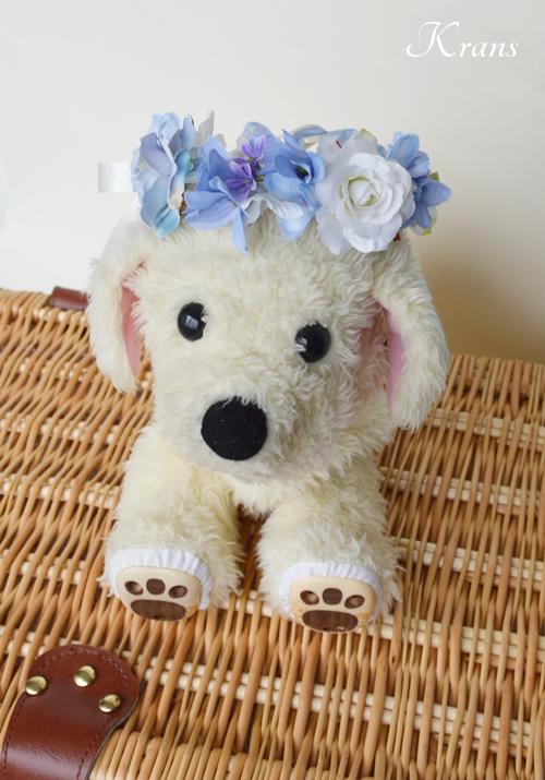 犬用の花冠リングドッグ4