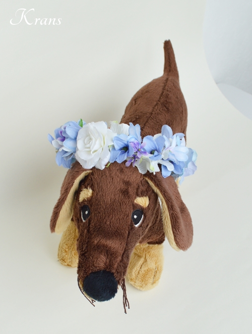 犬用の花冠リングドッグ12