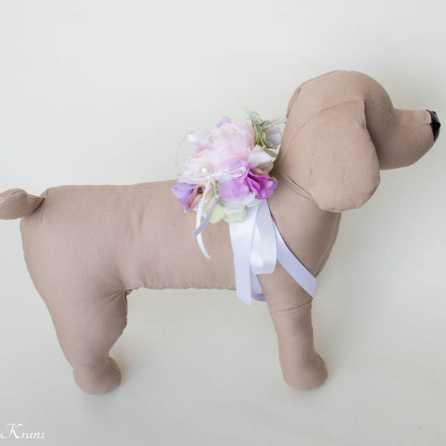 犬リングピローラナンキュラス4