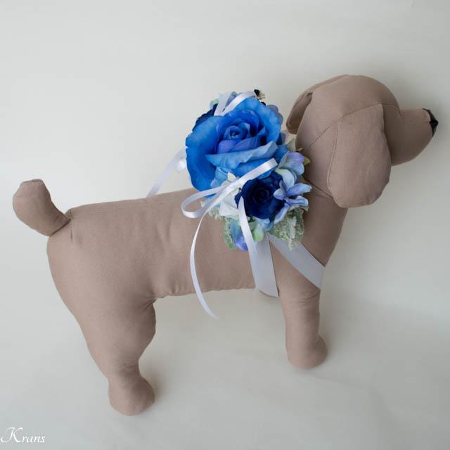 ブルーローズのリングピロー犬5