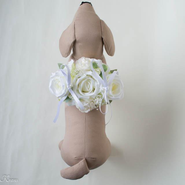 リングドッグ白いバラ5