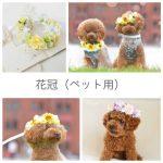 花冠犬猫ペット用販売