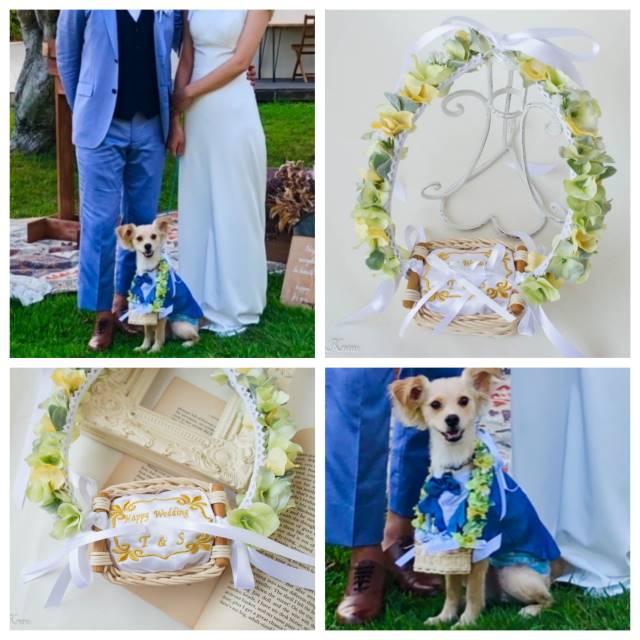 結婚式犬結婚指輪を運ぶリングピロー