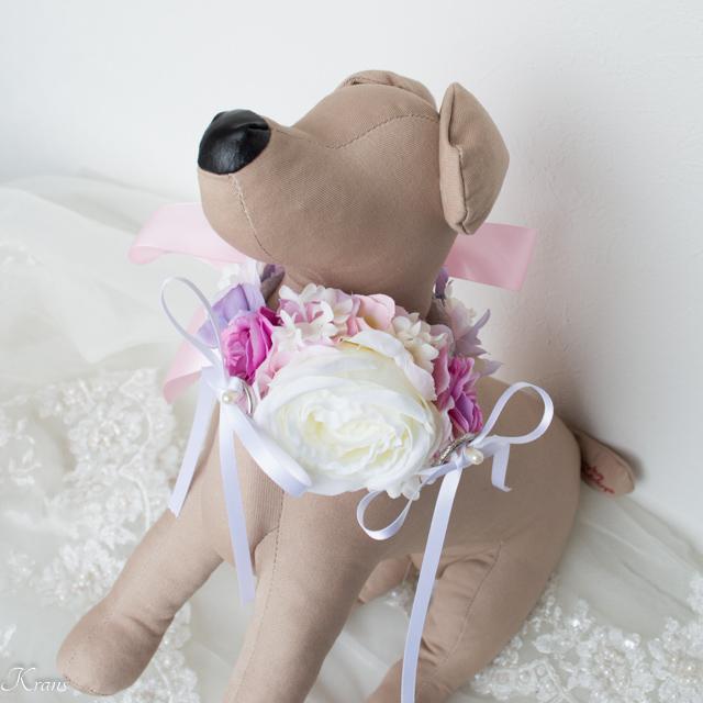 指輪結婚式犬リングドッグ