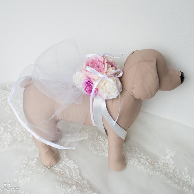 トイプードル結婚式ドレスリングドッグ2
