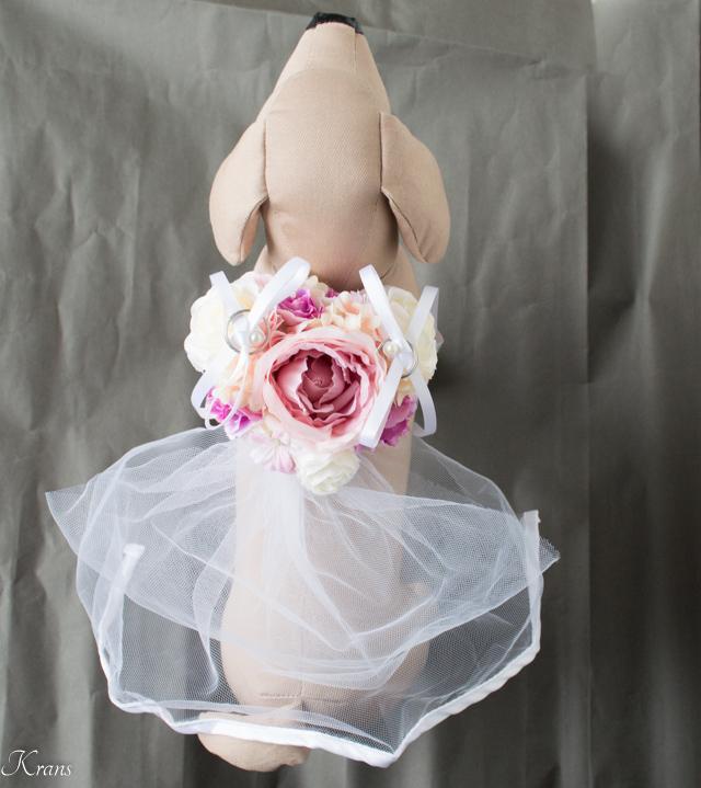トイプードル結婚式ドレスリングドッグ6